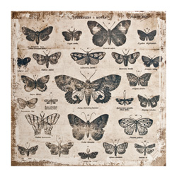 TH92953 Tim Holtz® Idea-ology District Market, Burlap Panel - Butterflies